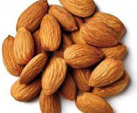 صادرات بادام درختی شیرین رقم مامایی